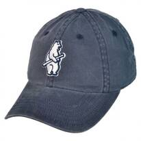 Chicago Cubs MLB Raglan Strapback Baseball Cap Dad Hat